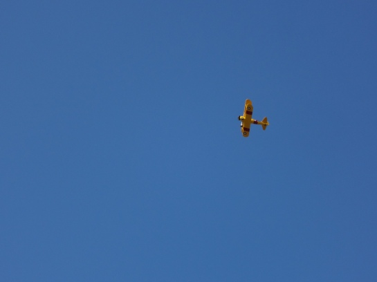 It's a bright yellow biplane and it's absolutely gorgeous.  And I think it was doing the sky equivalent of cartwheels.