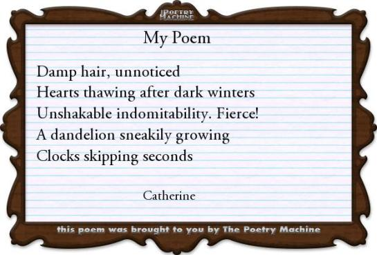 How to use The Poetry Machine