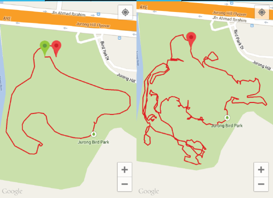 Happy Trails. (L) Track made by riding the tram. (R) Track made by walking.