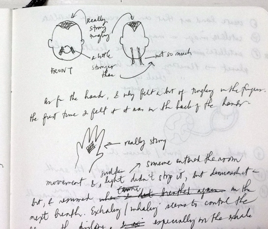 A page from my journal which shows where I feel it—on top of the head, on the face, and back of the hands and fingers.