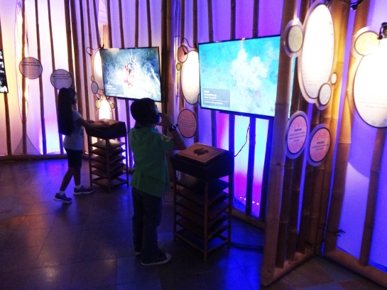 You can choose a  wooden sculpture and put them on an NFC reader to know more about the creature. Video footage provided by California Academy of Sciences.