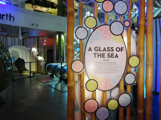 A Glass of the Sea features a sustainable bamboo frame.