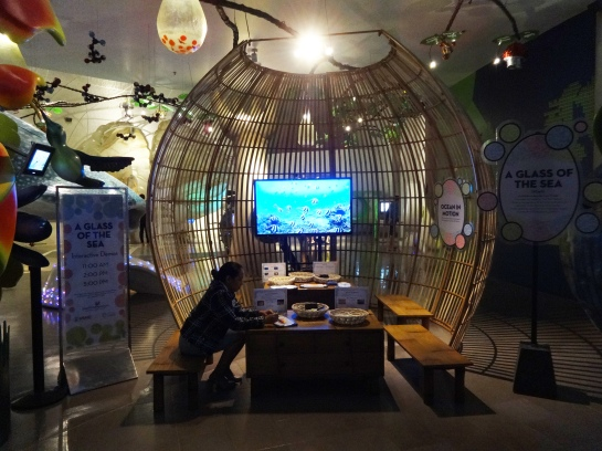 Here is our education space where visitors can make their own sea creatures, learn about marine protected areas, etc.