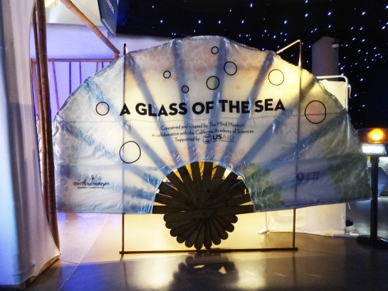 Welcome to A Glass of the Sea!